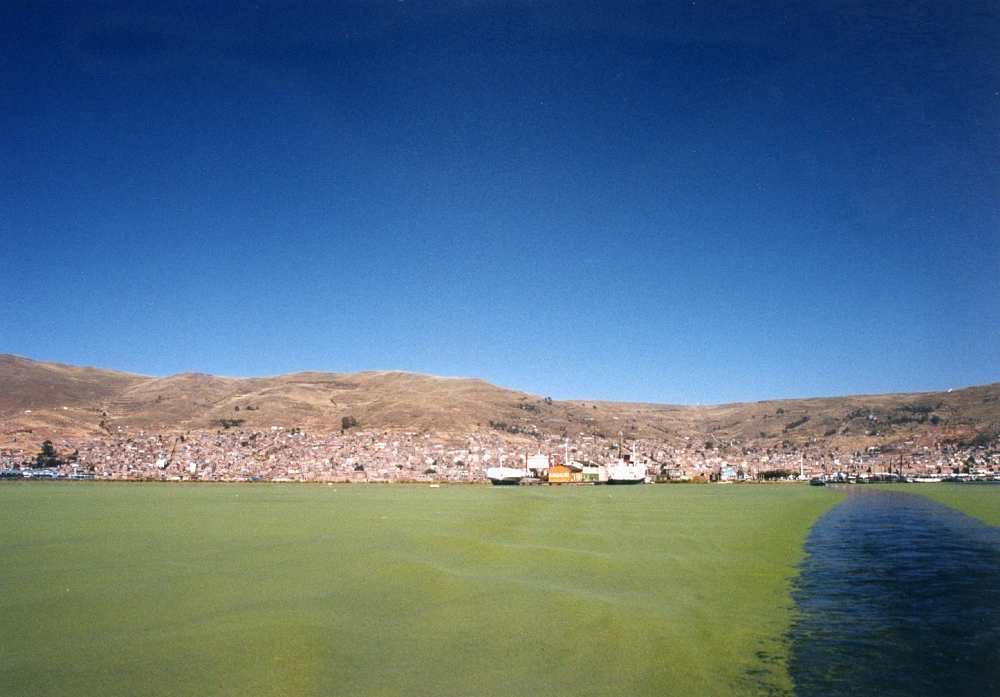 ペルー プーノ
