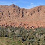 カスバ街道とトドラ峡谷、ダデス谷をドライブ【モロッコ】