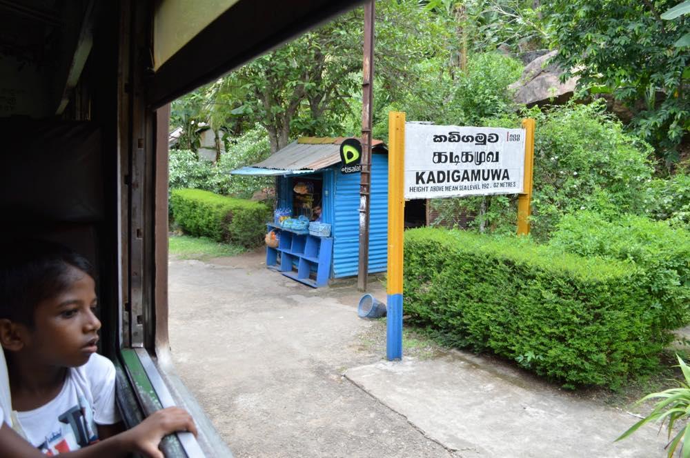 コロンボから列車でキャンディへ【スリランカ】