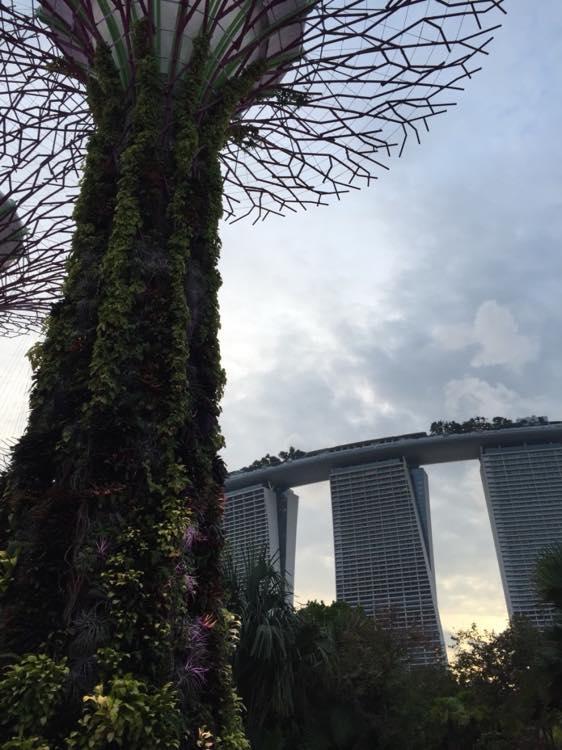 ガーデンズ・バイ・ザ・ベイ【シンガポール】