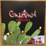 ♪グナワ・ディフュージョン(時代の棘)10年振りリリースの傑作アルバム