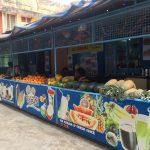 コヴァーラムのヴィレッジ散策とアーユルヴェーダ体験【南インド・ケララ州】