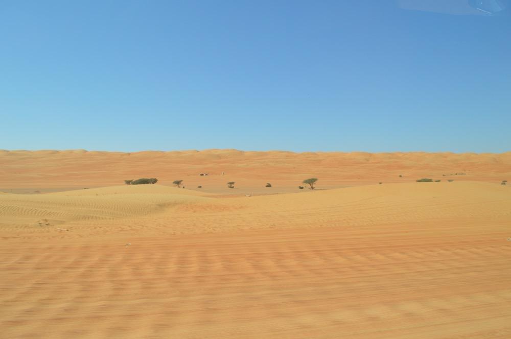 ワヒバ砂漠ツアー【オマーン旅⑨】