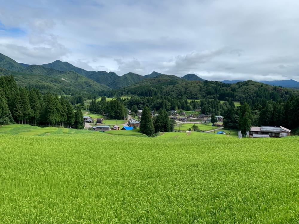 新潟県三条の旅(北五百川の棚田)